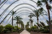 Valencia, urban garden — Stock Photo