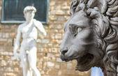 Florence, Lion of the Loggia dei Lanzi or the Signoria — Stock Photo
