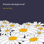 Daisies background — Stock Vector
