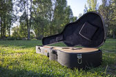 Acoustic guitar on the grass at sunset — Stock Photo