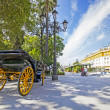 Carriages in the streets of Seville, Andalusia, Spain — Stock Photo #34688107