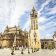 The Giralda and the Cathedral of Sevilla in Sevilla, Andalusia,  — Stock Photo