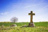 老石十字架,一棵树在绿色的田野和明亮的蓝色天空 — 图库照片