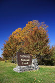 Sinal de entrada da floresta nacional — Foto Stock