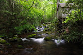 Scenic Smokies Creek — Stock Photo