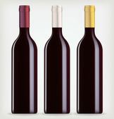 Tres botellas de vino — Vector de stock