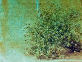 Kunst Grunge herbst Blumen Vintage Hintergrund — Stockfoto