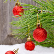 Stock Photo: Christmas ornaments on a branch