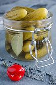 Pickles — Foto de Stock