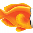 Vector de stock : Tomato clownfish