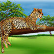 Leopard lying above branch of tree — Stock Vector #33098993