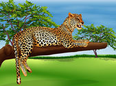 A leopard lying above the branch of a tree — Stock Vector