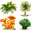 Stock Vector: Different plants