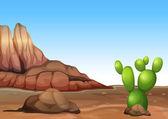 Een woestijn met een cactus — Stok Vektör