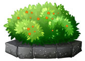 A flowering plant above the gray stone — Stock Vector