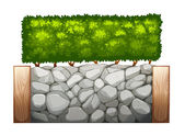 A stonewall with plants — Stock Vector