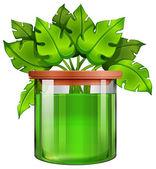 Ein glas mit einer grünen pflanze — Stockvektor
