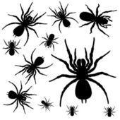 Spiders — Stock Vector