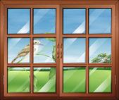 Kuş dışında kapalı bir pencere — Stok Vektör