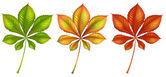 Groene planten — Stockvector