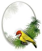 En rund mall med en fågel — Stockvektor