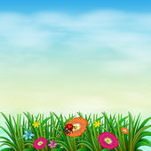 A garden with colourful flowers — Stock Vector