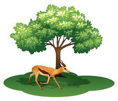 A deer under the tree — Stock Vector