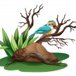 A bird at the branch of a tree — Stock Vector #49913243