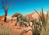 Elephants at the desert — Stock Vector