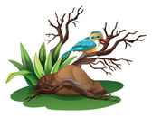 A bird at the branch of a tree — Stock Vector
