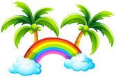 En regnbåge och kokospalmer — Stockvektor