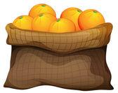 A sack of oranges — Cтоковый вектор