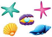 Sea creatures — Stock Vector
