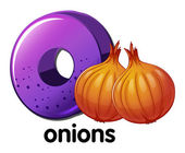 A letter O for onions — Stock Vector