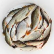 Stock Photo: Fresh raw fish on dish.