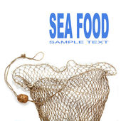 Rede de pesca. — Foto Stock