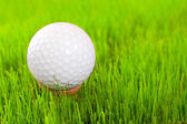 Golf ball on tee over a green. — Stock Photo