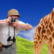 Funny picture. Crazy wildlife photographer and giraffe.  — Stock Photo
