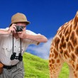 Funny picture. Crazy wildlife photographer and giraffe. — Stock Photo #29593049