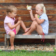 Stock Photo: Children picnic on rural bench.
