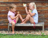 Children picnic on the rural bench. — Stock Photo
