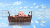 Little sailor in basket. — Stock Photo