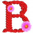 Letter B from red leaves and aster flowers — Stock Photo #33359933