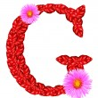 Letter G  from red leaves and aster flowers — Stock Photo