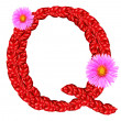Letter Q from red leaves and aster flowers — Stock Photo #33360103