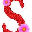Letter S from red leaves and aster flowers — Foto de Stock