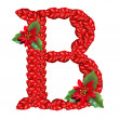 Letter from red christmas flowers . Nice Christmas Alphabet. — Stock Photo