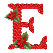 Letter from red christmas flowers . Nice Christmas Alphabet. — Stock Photo #33360253