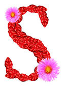 Letter S from red leaves and aster flowers — Stock Photo