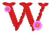 Letter W from red leaves and aster flowers — Stock Photo